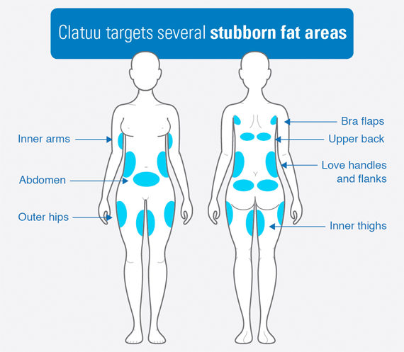 clatuu-fat-freezing-treatment-targets
